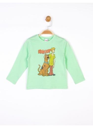 Scooby-Doo Çocuk Uzun Kol Tişört Renkli